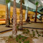 TAV AIRPORT HOTEL | Two Component Spray Polyurathane Water Insulation and Flooring Systems